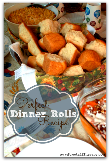 perfect dinner rolls